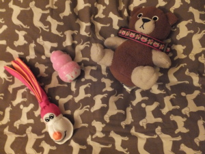 Puppy Bed and Toys